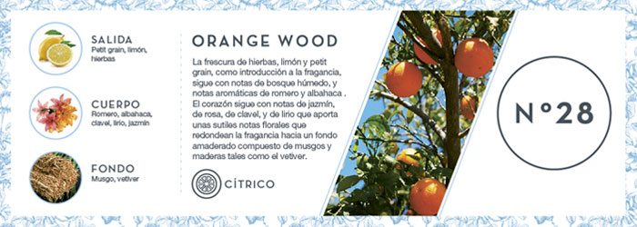 Fragancia Orange Wood